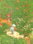 榉之木 第1卷